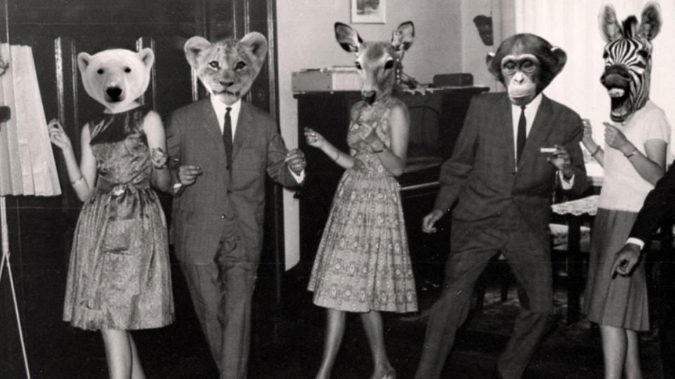 6 settembre: Wild (Final) Party